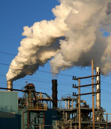 term paper on pollution The water in most of our rivers is highly polluted the pollution of river water is caused by the dumping of untreated sewage and industrial wastes into it.