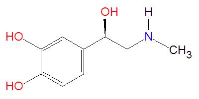 File:Epinephrine.jpg