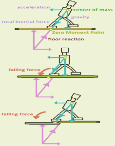Asimo encyclopedia article citizendium cc diagram chunbum park zero moment point is where floor reaction minus total inertial force equals 0 loss of balance occurs when the target zmp and the ccuart Images