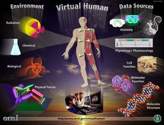 chemistry for human welfare it's promises Job listings here are our current we help the federal government deliver on its promises through health insurance bc (british columbia), as well as welfare.