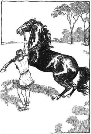 who rode a horse called bucephalus