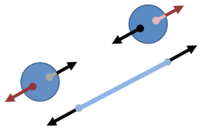 Rotating spheres subject to centrifugal (outward) force in a co-rotating frame in addition to the (inward) tension from the rope.