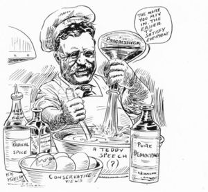 compare the domestic reforms of president theodore roosevelt and woodrow wilson All presidents with their party, years in office, and their domestic and foreign  policies for ap us history  theodore roosevelt republican  woodrow  wilson.