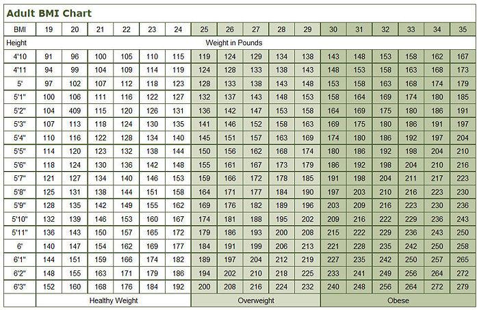 Body Mass Index Encyclopedia Article Citizendium