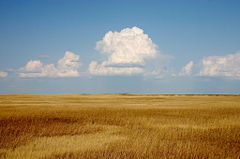 The prairie of South Dakota.