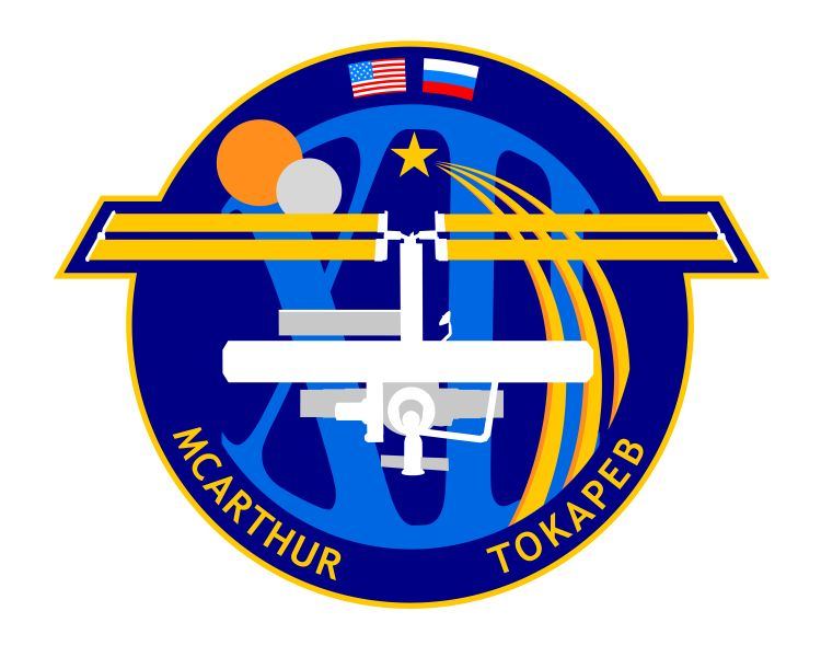 File:ISS Expedition 12 Patch.jpg