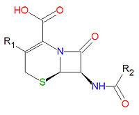 An ideal antimicrobial therapeutic drug exhibits all of the following characteristics except Ampicillin, amoxicillin, mezlocillin, and penicillin G all have.